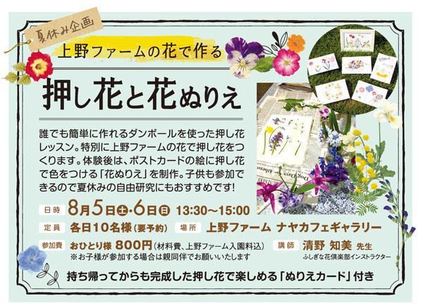[トップコレクション] 花のぬりえ