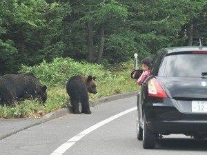 【中止】動物園フォーラム2020~野生生物と人との共生について~