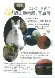 にいた まきこ「旭川動物園」写真展