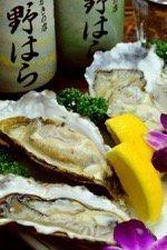 牡蠣の店 味処居酒屋 野はら