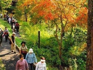 滝上町観光協会