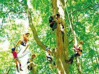 キトウシ森林公園